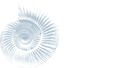 Dorset Digestion Clinic